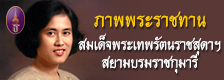 Banner index top 2 th